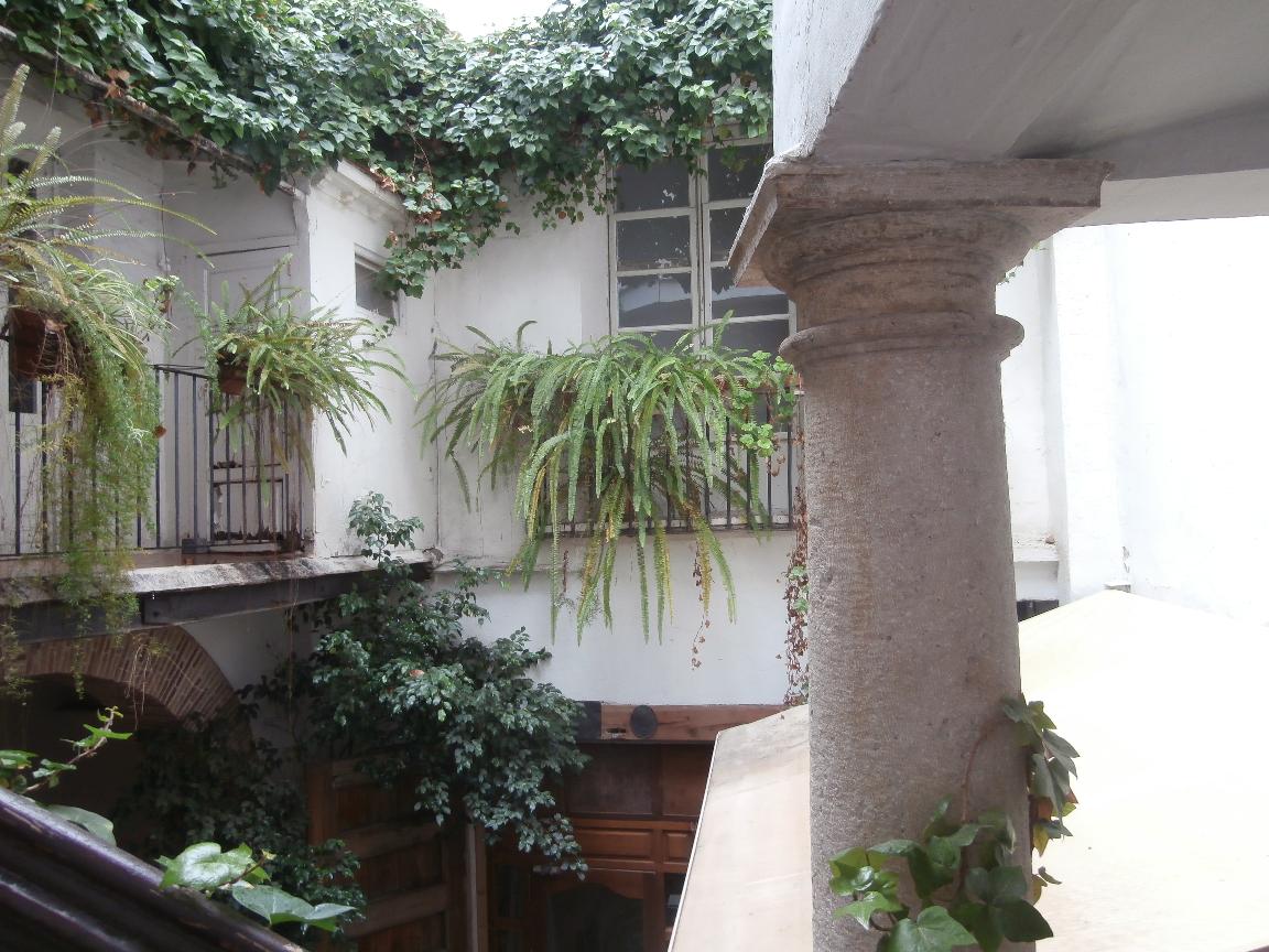 patio4